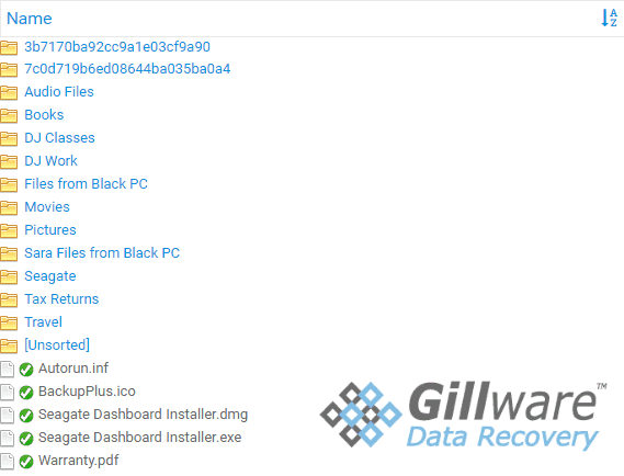 Gillware Online Recovery Portal View