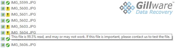 Gillware Secure Online File Viewer Portal
