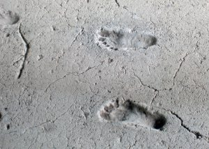 Employee Data Theft leaves traces, like these 2000+ year old footprints