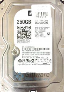 Western Digital 250GB hard drive