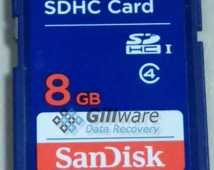 SanDisk 8GB SDHC Card