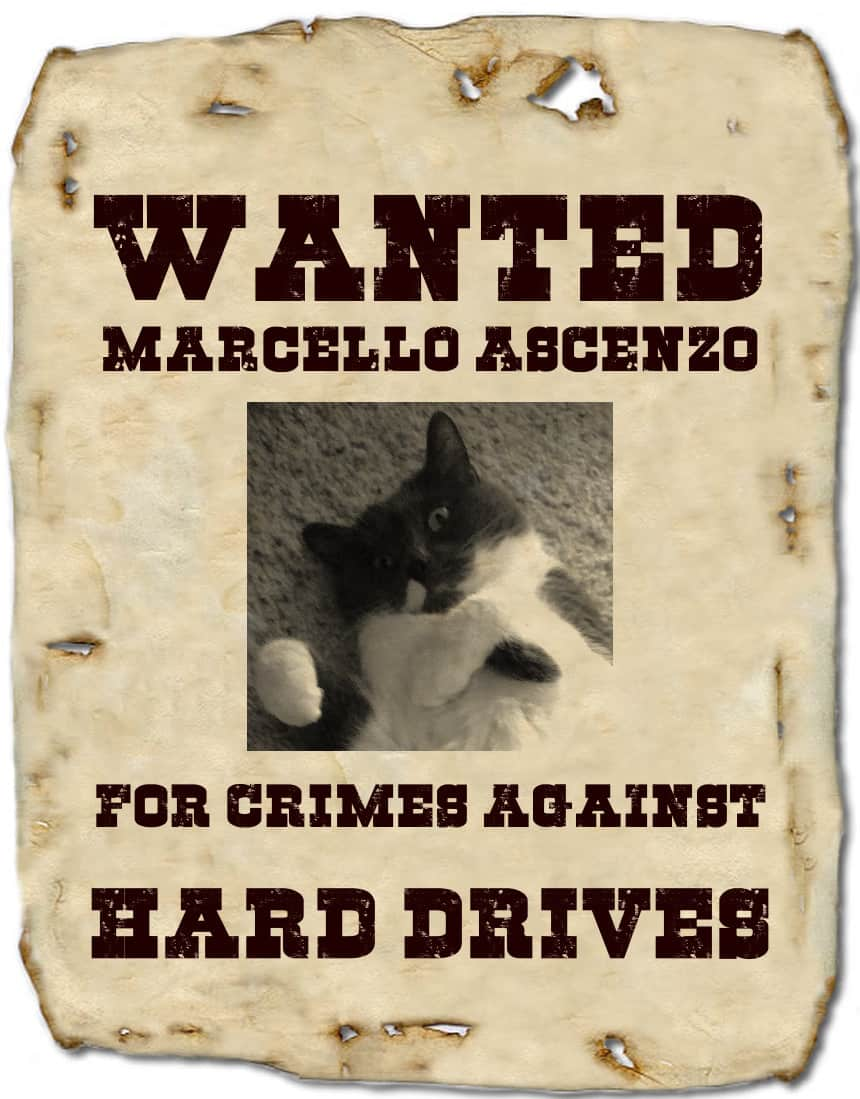 Wanted Poster picturing cat, with crimes against hard drives as accusation