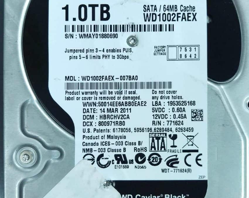 Western Digital Server Crash