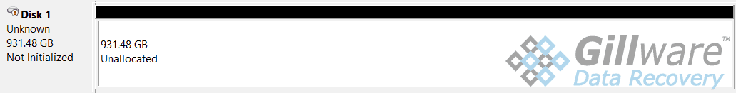 Laptop data recovery - disk not initialized