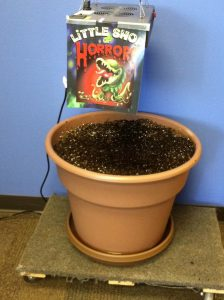 The mysterious pot of soil spotted in Gillware's breakroom after the eclipse.