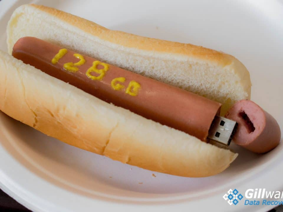 128 GB USB flash drive hot dog