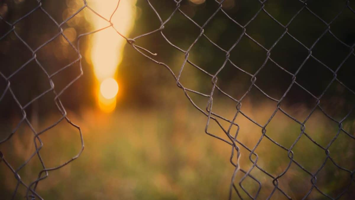 Broken chain link fence at dusk, representing how cybercriminals hijack large sums of money through wire transfer fraud